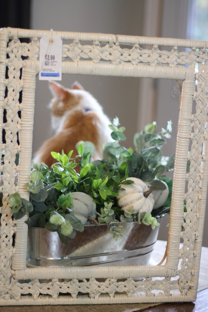 DIY Boxwood Wreath in Frame